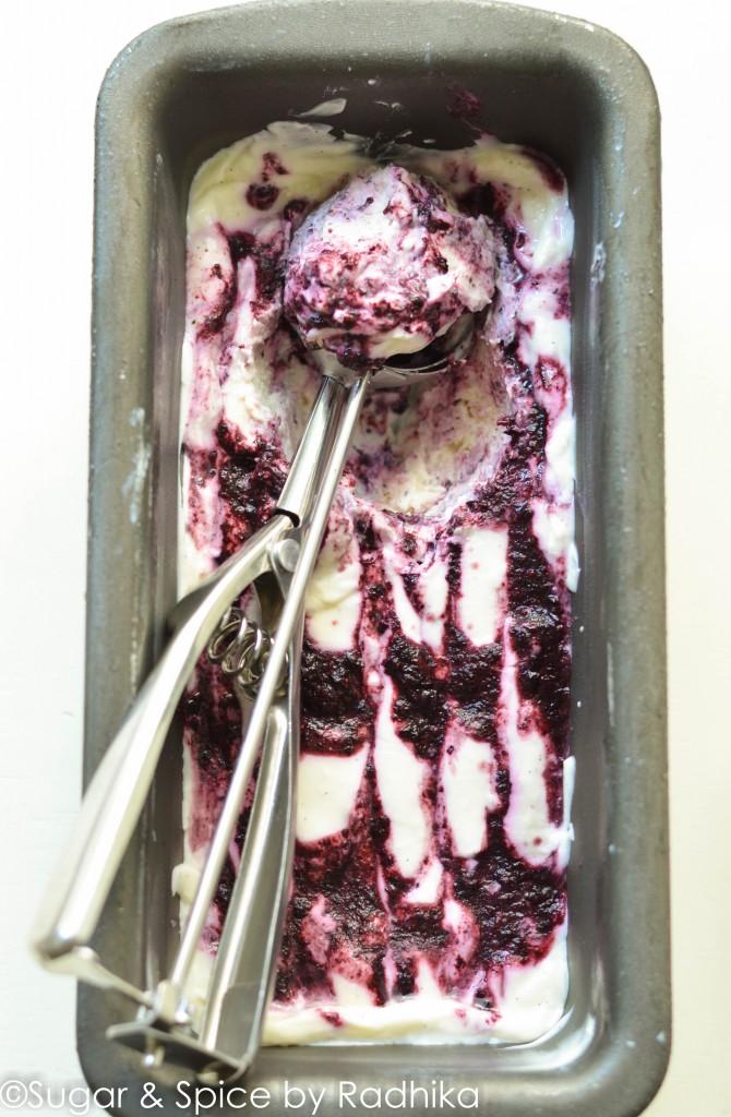 Vanilla Blueberry Frozen Yogurt